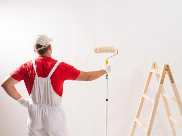 Young Man On Painting Wall With Roller